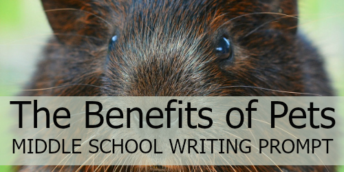 Write an Introduction: The Benefits of Owning a Pet