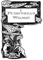 Pudd'nhead Wilson image