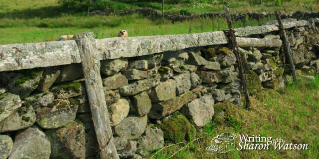 Good Fences Make Good Neighbors >> Robert Frost Good Fences Make Good Neighbors High School Prompt