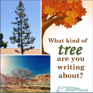 be specific tree image