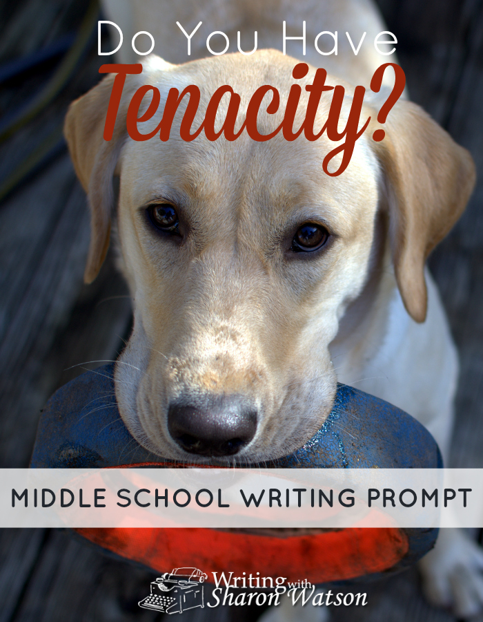 MIDDLE SCHOOL PROMPT: What can you accomplish if you have tenacity? Read about this famous scientist and then choose your prompt.