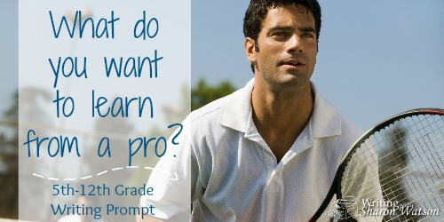 What Skill Do You Want to Learn from a Pro?